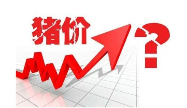 """李克强:更多用市场化方式缓解""""猪周期""""波动"""