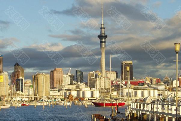 新西兰房价飙升造成住房危机 引发人权调查